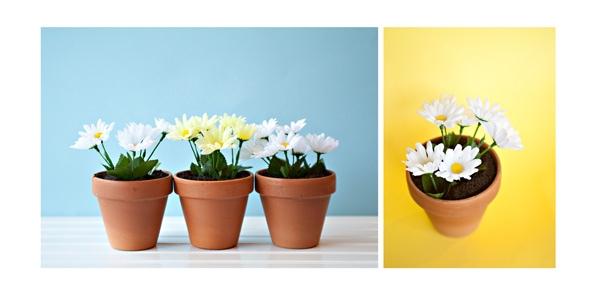 159 & Dirt Cake in Flowerpots | Baked Bree