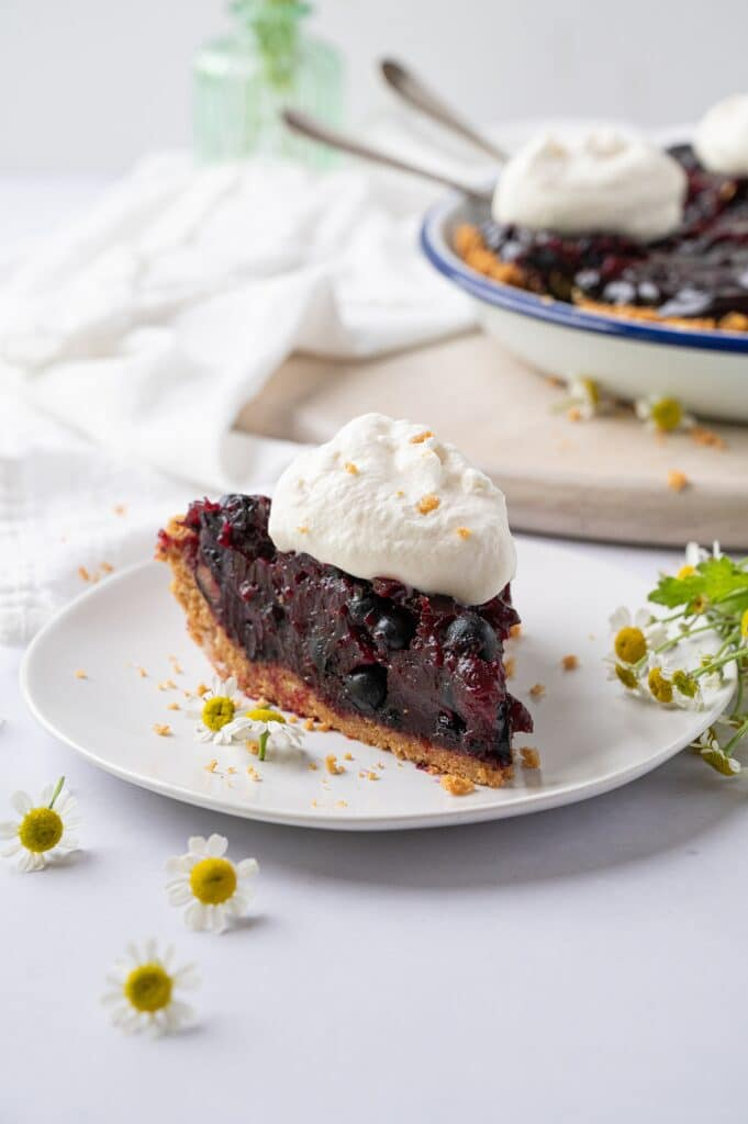 a piece of fresh blueberry pie on a plate with a whole pie in the background