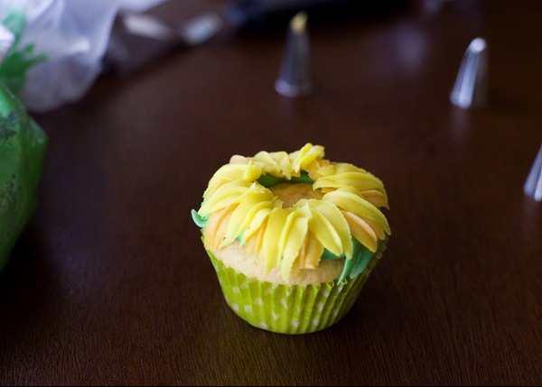 sunflower cupcake recipe