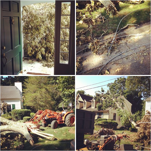 storm damage South Jersey