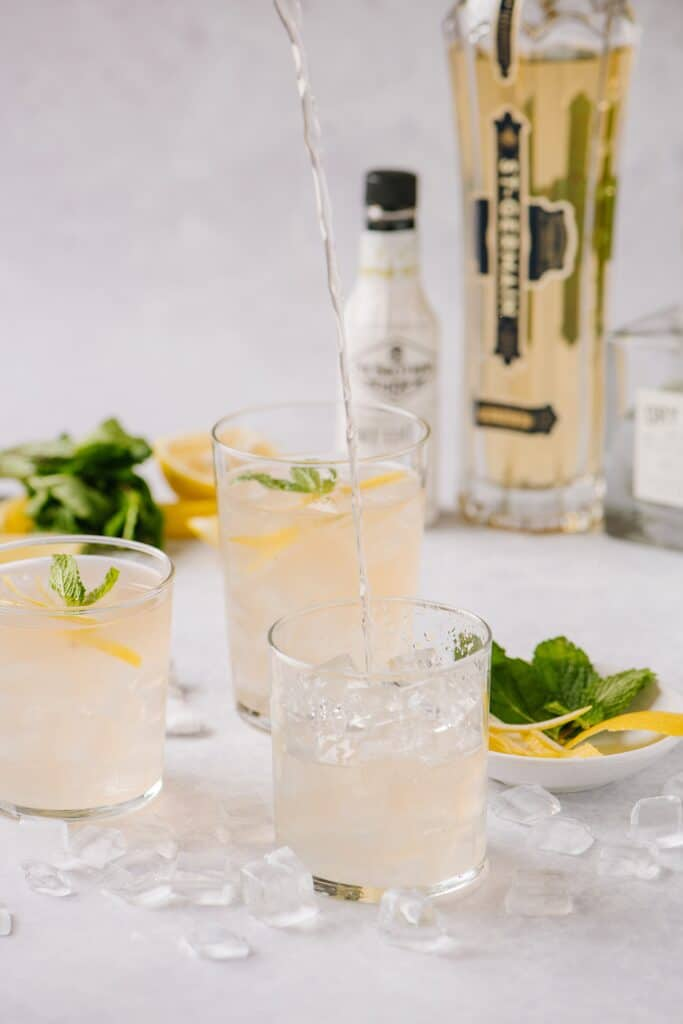 elderflower smash cocktail with St-Germain liqueur, gin, lemon and mint leaves in the background