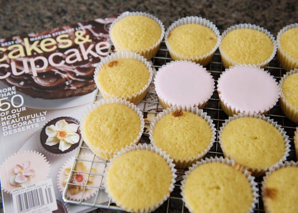 ginger and rosewater cupcakes recipe