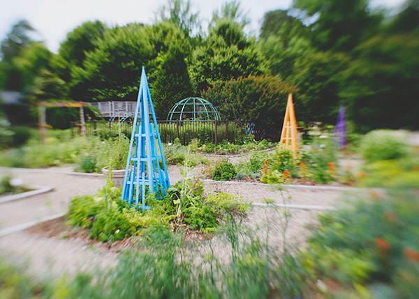 lewes-gardens_6