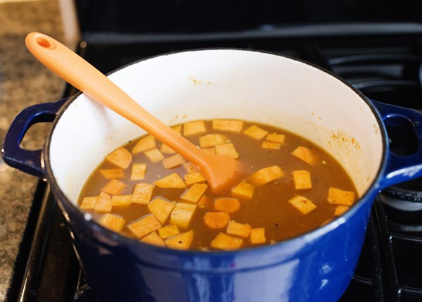 chicken satay soup recipe