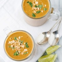 chicken satay soup recipe