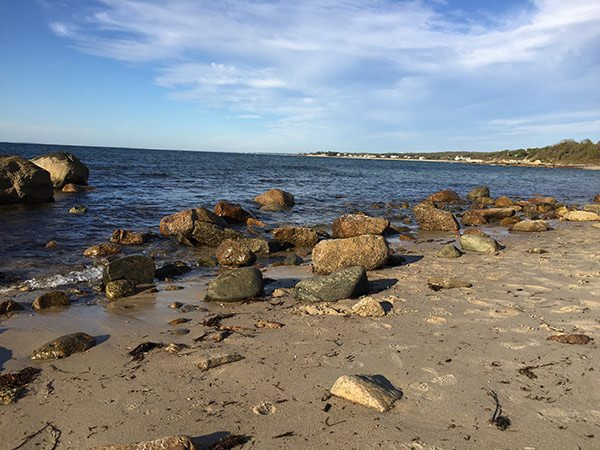 5 things to do in Falmouth, MA